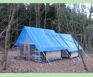 合宿テント