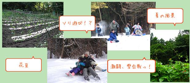 山の家の春夏秋:畑 冬:雪遊び場