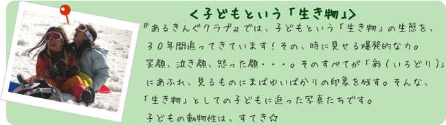 フォトアルバム<子どもという「生き物」>