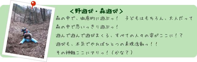 フォトアルバム【野遊び・森遊び】