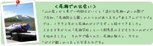 フォトアルバム<尾瀬での出会い>